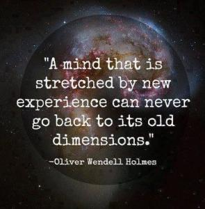 a-mind-that-is-stretched-by-a-new-experience-can-never-go-back-to-its-old-dimensions-quote-2